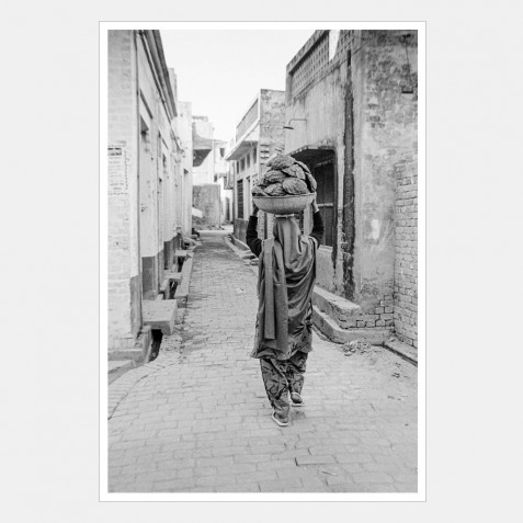 Woman carrying home a basin full of cowpats, Punjab, India